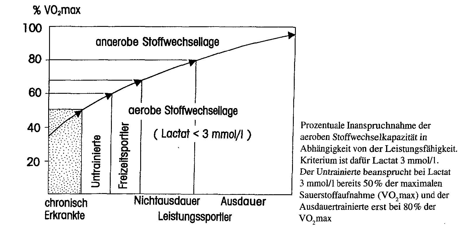 Stoffwechsel - Sport A-Z